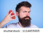 man beard hipster strawberries... | Shutterstock . vector #1116855005