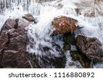 close up details of tropical... | Shutterstock . vector #1116880892