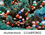 christmas tree with balls on... | Shutterstock . vector #1116892802