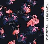 Exotic Pink Flamingo Pattern....