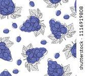 blue ripe grape berries ... | Shutterstock .eps vector #1116919808