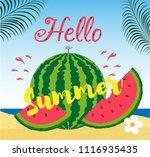 hello summer inscription on the ... | Shutterstock .eps vector #1116935435
