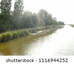 dutch ditch  friesland | Shutterstock . vector #1116944252