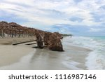 fallen sunshades on the beach ... | Shutterstock . vector #1116987146