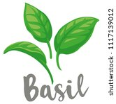 basil leaves vector flat... | Shutterstock .eps vector #1117139012