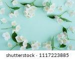 jasmine flowers frame top view  ... | Shutterstock . vector #1117223885