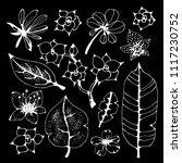 tropical flowers leaves. hand... | Shutterstock .eps vector #1117230752