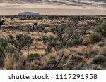 australia mt. conner circa...   Shutterstock . vector #1117291958