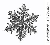 snowflake on white background.... | Shutterstock .eps vector #1117295618