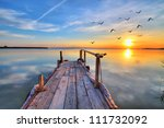 flying by the lake | Shutterstock . vector #111732092