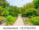talbot botanical garden in... | Shutterstock . vector #1117321352