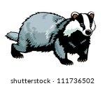 badger   vector picture... | Shutterstock .eps vector #111736502