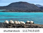 afar tents   huts on ghoubet... | Shutterstock . vector #1117415105