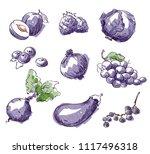 assortment of purple foods ... | Shutterstock .eps vector #1117496318