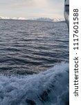 spitsbergen   svalbard and jan... | Shutterstock . vector #1117601588