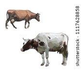 cow calf brown  vector | Shutterstock .eps vector #1117628858