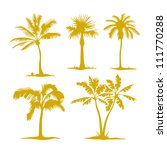 Vector Palm Contours Isolated...