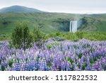 skogafoss waterfall  iceland.... | Shutterstock . vector #1117822532