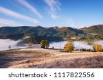 autumn landscape with morning... | Shutterstock . vector #1117822556
