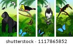 vector jungle rainforest... | Shutterstock .eps vector #1117865852