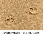 dog prints in sand  beach at... | Shutterstock . vector #1117878326