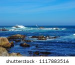 pacific grove  ca   usa  ... | Shutterstock . vector #1117883516