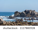 pacific grove  ca   usa  ... | Shutterstock . vector #1117883528