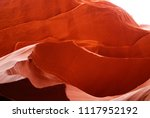 bright orange slot antelope...   Shutterstock . vector #1117952192