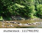 clean mountain river  stream | Shutterstock . vector #1117981592