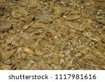clean mountain river   stones | Shutterstock . vector #1117981616