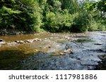 clean mountain river  stream | Shutterstock . vector #1117981886
