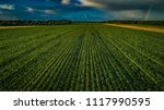 biogas plant and corn field... | Shutterstock . vector #1117990595