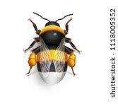 raster version. illustration of ... | Shutterstock . vector #1118005352