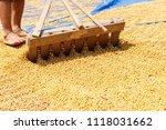 dehumidification process... | Shutterstock . vector #1118031662