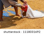 dehumidification process... | Shutterstock . vector #1118031692