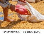 dehumidification process... | Shutterstock . vector #1118031698