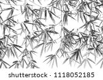 bamboo leaves in black and... | Shutterstock . vector #1118052185