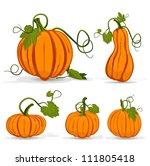 Set Of Pumpkins Isolated On...