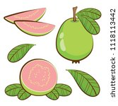 vector guava fruit with leaf on ... | Shutterstock .eps vector #1118113442