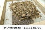 soil with a sieve  6 mm   soil... | Shutterstock . vector #1118150792