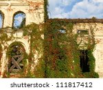 Old Building Overgrown With Re...