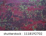 wall for texture background | Shutterstock . vector #1118192702
