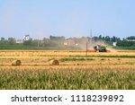 fosoline  italy   june  20 ... | Shutterstock . vector #1118239892
