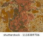 natural rusty texture ... | Shutterstock .eps vector #1118389706