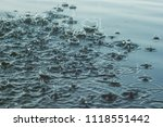 The Surface Of The Water Is...