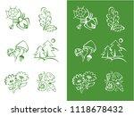vector hand drawn green set of... | Shutterstock .eps vector #1118678432