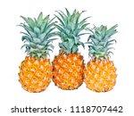 pineapple on white background | Shutterstock . vector #1118707442