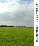 frisian meadow  dutch landscape | Shutterstock . vector #1118745605