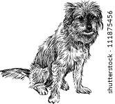 funny dog | Shutterstock .eps vector #111875456
