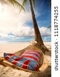 romantic hammock in the shadow ... | Shutterstock . vector #1118774255